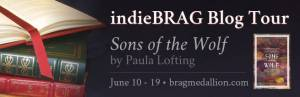 Sons of the Wolf blog tour banner