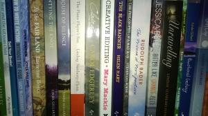 Row of self-published books on a shelf